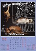 декабрь, ркс, белое и пушистое жкх, котята, тонкинез, новый год