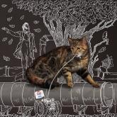 ркс, белое и пушистое жкх, календарь, кошка